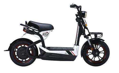 Xe đạp điện Việt Nam ngày càng khẳng định được vị thế trên thị trường